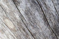 Παλαιά θαλάσσια ξύλινη σύσταση με τη φωτογραφία καμπυλών Ξεπερασμένος πίνακας ξυλείας με τις γραμμές ρωγμών Στοκ εικόνα με δικαίωμα ελεύθερης χρήσης