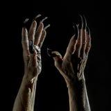 Παλαιά θηλυκά χέρια με τα μακριά καρφιά Στοκ εικόνα με δικαίωμα ελεύθερης χρήσης