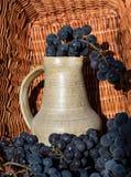 Παλαιά κανάτα κρασιού αργίλου που περιβάλλεται από τις μαύρες δέσμες σταφυλιών Στοκ εικόνα με δικαίωμα ελεύθερης χρήσης