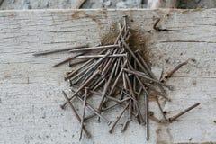 Παλαιά καρφιά σιδήρου με σκουριασμένο Στοκ φωτογραφίες με δικαίωμα ελεύθερης χρήσης