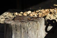 Παλαιά καρφιά Στοκ φωτογραφία με δικαίωμα ελεύθερης χρήσης