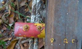 Παλαιά καρύδια χάλυβα Στοκ εικόνες με δικαίωμα ελεύθερης χρήσης