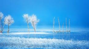 Παλαιά κατασκευή αποβαθρών και όμορφα παγωμένα δέντρα Στοκ φωτογραφία με δικαίωμα ελεύθερης χρήσης