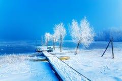 Παλαιά κατασκευή αποβαθρών και όμορφα παγωμένα δέντρα Στοκ Φωτογραφία