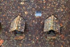 Παλαιά καφετιά στέγη κεραμιδιών με το dormer στοκ φωτογραφία με δικαίωμα ελεύθερης χρήσης