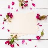 Παλαιά κενή φωτογραφία για το εσωτερικό και το πλαίσιο των λουλουδιών μήλων στοκ εικόνα με δικαίωμα ελεύθερης χρήσης