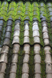 Παλαιά κεραμωμένη στέγη Στοκ φωτογραφία με δικαίωμα ελεύθερης χρήσης