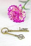 Παλαιά κλειδιά και λουλούδι στο άσπρο ξύλινο υπόβαθρο Στοκ Εικόνες