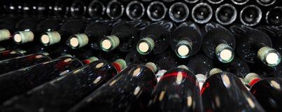 Παλαιά μπουκάλια του κόκκινου κρασιού Στοκ Εικόνα