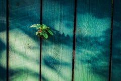 Παλαιά ξύλινη ανασκόπηση φραγών Στοκ εικόνα με δικαίωμα ελεύθερης χρήσης