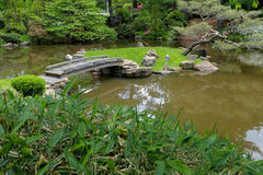 Παλαιά ξύλινη γέφυρα ποδιών πέρα από μια λίμνη koi Στοκ εικόνα με δικαίωμα ελεύθερης χρήσης