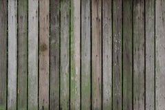 Παλαιά ξύλινη ζωηρόχρωμη σύσταση Στοκ Φωτογραφίες