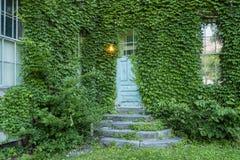 Παλαιά ξύλινη πόρτα με τα φύλλα Στοκ Φωτογραφίες