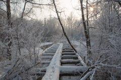 Παλαιά ξύλινη σπασμένη γέφυρα για πεζούς που καλύπτεται με το χιόνι Στοκ φωτογραφίες με δικαίωμα ελεύθερης χρήσης