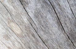 Παλαιά ξύλινη σύσταση θάλασσας με τη φωτογραφία καμπυλών Ξεπερασμένος πίνακας ξυλείας με τις γραμμές ρωγμών Στοκ Εικόνα