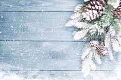 Παλαιά ξύλινη σύσταση με το χιόνι και firtree Στοκ Εικόνες