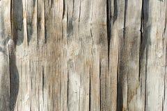 Παλαιά ξύλινη σύσταση, ξεπερασμένος ξεπερασμένος τραχύς στοκ φωτογραφία
