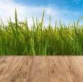 παλαιά ξύλο και ρύζι με τον ουρανό Στοκ Εικόνα