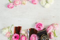 Παλαιά λουλούδια καμερών και βατραχίων στοκ φωτογραφία με δικαίωμα ελεύθερης χρήσης
