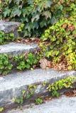 παλαιά πέτρα σκαλών Στοκ φωτογραφία με δικαίωμα ελεύθερης χρήσης