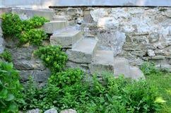 παλαιά πέτρα σκαλών Στοκ Εικόνα