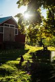 Παλαιά παραδοσιακή φινλανδική σιταποθήκη Στοκ φωτογραφίες με δικαίωμα ελεύθερης χρήσης