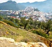 παλαιά πόλη στο σπίτι εδάφους του Μαρόκου και κοιλάδα τοπίων Στοκ Φωτογραφία