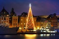 Παλαιά πόλη Stockholms με το χριστουγεννιάτικο δέντρο Στοκ φωτογραφία με δικαίωμα ελεύθερης χρήσης