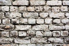 Παλαιά πλινθοδομή των άσπρων τούβλων Στοκ εικόνες με δικαίωμα ελεύθερης χρήσης