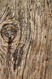 Παλαιά ραγισμένη δεμένη σανίδα τη σκουριασμένη βίδα Phillips που ενσωματώνεται με Στοκ Εικόνες