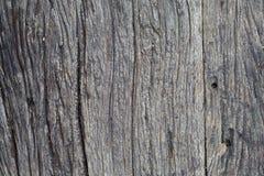 Παλαιά σανίδα ξύλινη Στοκ Φωτογραφίες