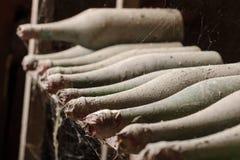 Παλαιά σκονισμένα μπουκάλια κρασιού με το spiderweb στο κελάρι Στοκ Εικόνες