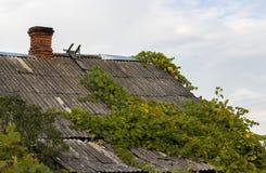 παλαιά στέγη Στοκ Εικόνες
