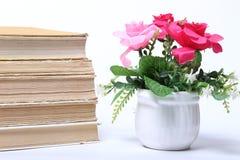 παλαιά στοίβα βιβλίων απομονωμένο λουλούδια λευκό δοχείων Στοκ Φωτογραφίες