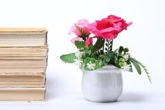 παλαιά στοίβα βιβλίων απομονωμένο λουλούδια λευκό δοχείων Στοκ Εικόνα