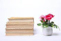 παλαιά στοίβα βιβλίων απομονωμένο λουλούδια λευκό δοχείων Στοκ φωτογραφία με δικαίωμα ελεύθερης χρήσης