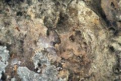 Παλαιά σύσταση πετρών Στοκ φωτογραφίες με δικαίωμα ελεύθερης χρήσης