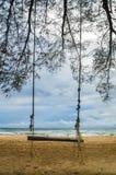 Παλαιά ταλάντευση δέντρων σε μια κενή παραλία, Koh Rong Saleom, Καμπότζη στοκ εικόνα με δικαίωμα ελεύθερης χρήσης