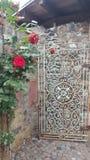 Παλαιά τριαντάφυλλα πορτών oldtown Στοκ εικόνες με δικαίωμα ελεύθερης χρήσης