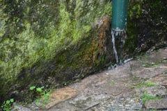 Παλαιά υδρορροή σε έναν mossy τοίχο Στοκ Εικόνα