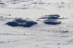 Παλαιές παγωμένες τρύπες αλιείας πάγου Στοκ Εικόνες