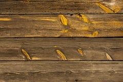 παλαιές σανίδες ξύλινες Στοκ Εικόνα