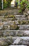 Παλαιές σκάλα και βλάστηση πόλεων †‹â€ ‹Ευρώπη Στοκ Φωτογραφίες