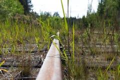 Παλαιές σκουριασμένες διαδρομές σιδηροδρόμων με τους ξύλινους κοιμώμεούς Στοκ Εικόνα