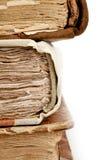 Παλαιές σπονδυλικές στήλες βιβλίων Στοκ Φωτογραφίες