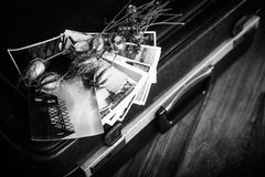 Παλαιές φωτογραφίες, μια κάμερα και ξηρά λουλούδια μαύρο λευκό Στοκ Φωτογραφία