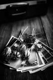 Παλαιές φωτογραφίες, μια κάμερα και ξηρά λουλούδια μαύρο λευκό Στοκ Φωτογραφίες