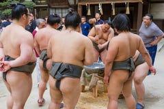 Παλαιστές σούμο που σφυροκοπούν Mochi στοκ φωτογραφία