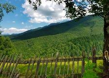 Παλαιός αγροτικός ξύλινος φράκτης στη βάση των όμορφων πράσινων δασών Μ Στοκ φωτογραφία με δικαίωμα ελεύθερης χρήσης