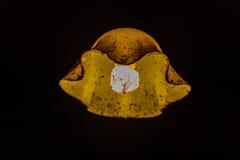 Παλαιός λαμπτήρας τα έντομα που παγιδεύονται με στους Ιστούς αραχνών Στοκ φωτογραφία με δικαίωμα ελεύθερης χρήσης